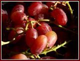 November 12 - Grape Expectations