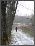 November 17 - A Winter Walk