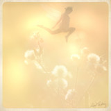 Fairies and Fairytale Magic