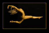 Golden Dancer jpg