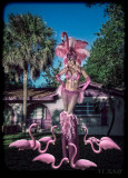 Worshiping the Pink Flamingo Queen