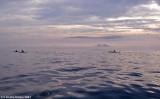 paddling at sunrise