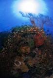 Lombok_U-W-1.jpg