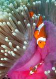 Lombok_U-W-9.jpg