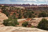 In the The Needles section of Canyonlands