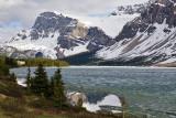 Bow Peak, Crowfoot Glacier and Bow Lake