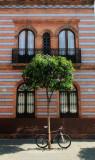 Sevilla 2.jpg