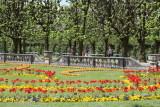 Mirabell Gardens flowers
