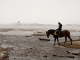 Wild-horse-woman-O.jpg