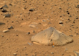 Pop-Top-Mars.jpg