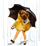 Morton-dog.jpg