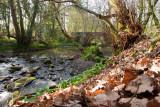 Hidden Bridge In The Valley