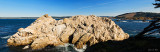Pnt. Lobos California.jpg