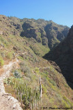 Scenic route into the Barranco