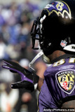 Baltimore Ravens WR Anquan Boldin