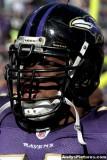 Baltimore Ravens LB Terrell Suggs