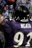 Baltimore Ravens NT Haloti Ngata