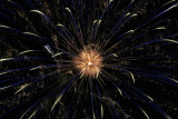 Firework Abstracts Gallery