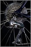 May 2012 - Bicycles - Shimano - Dale Edsen