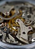 August 2012 - Shallow DOF - Dale Edsen - 19 Jewels