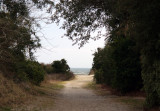 The path from the beach