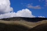 clouds and seductive contours...