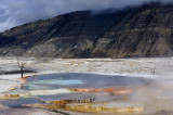 somewhere in yellowstone national park...