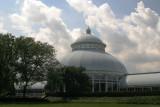 Green House in the New York Botanical Gardens