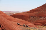 Trail to the Painted Desert