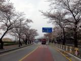 photo-37.JPG