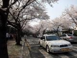photo-31.JPG