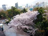 photo-47.JPG