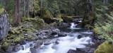 deception creek falls stevens pass washington.jpg