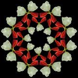 Kaleidoscopic Picture Creations *