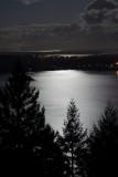 Brentwood Bay under a full moon_portrait.jpg