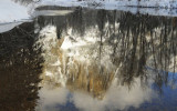 Reflection in the Merced River