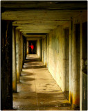 Fort Stevens - Receding Walkway