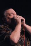 James Harman's harmonica blowout