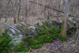 Old Stone Walls