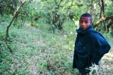 Boy, Debresena Church forest