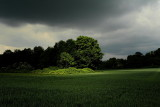 Natur und Landschaft
