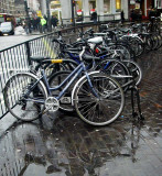 Wet Bicycle Seats
