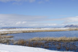 23. Water, Snow and Reeds