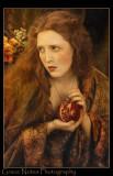 Persephone IV