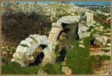 Ruin of Blaya