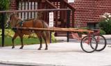 Little horse and little cart