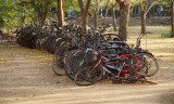 Dumped bicycles