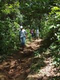 The narrow trail