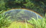 Rainbow in the spray