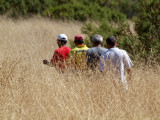 Hike up Bald mountain in Sugarloaf SP, CA